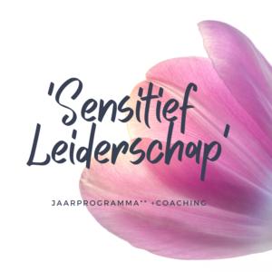 HSP-sensitief-leiderschap-jaarprogramma**